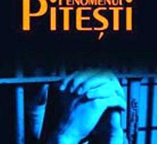 O interpretare etico-fenomenologică a fenomenului Piteşti