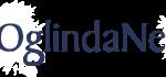 oglindanet-logo